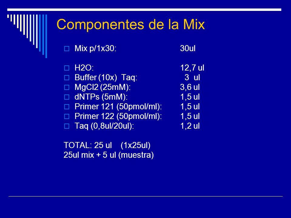 Componentes de la Mix Mix p/1x30: 30ul H2O: 12,7 ul