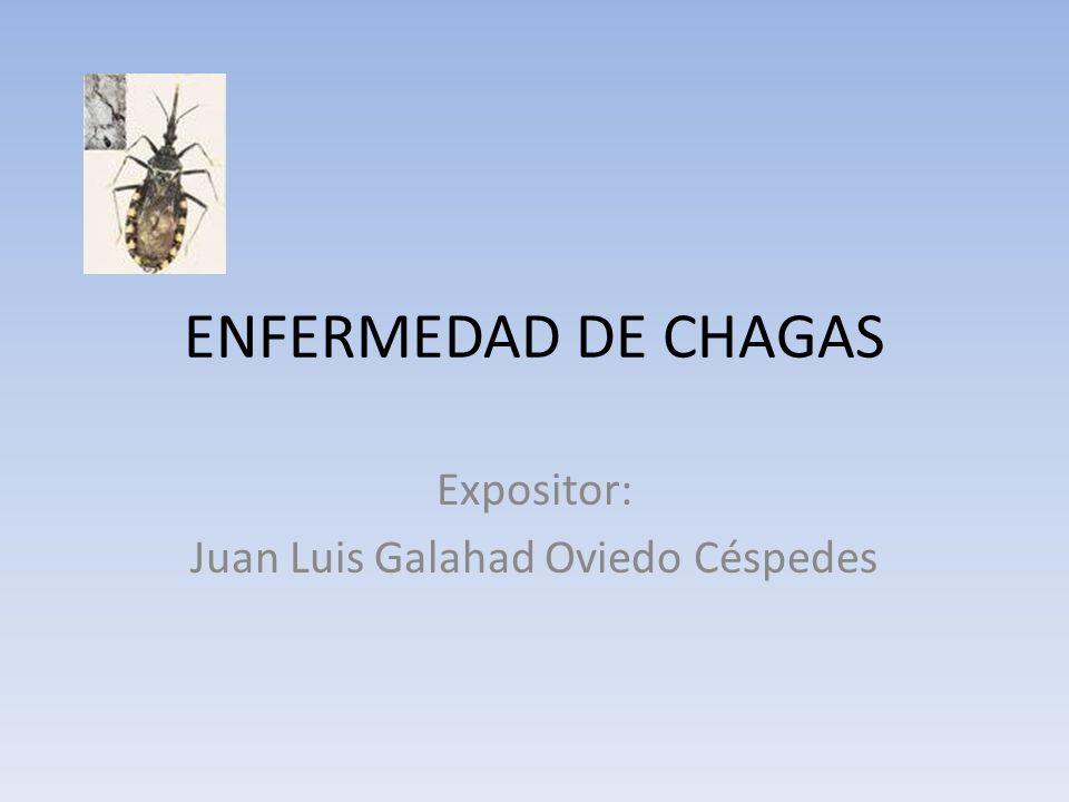 Expositor: Juan Luis Galahad Oviedo Céspedes