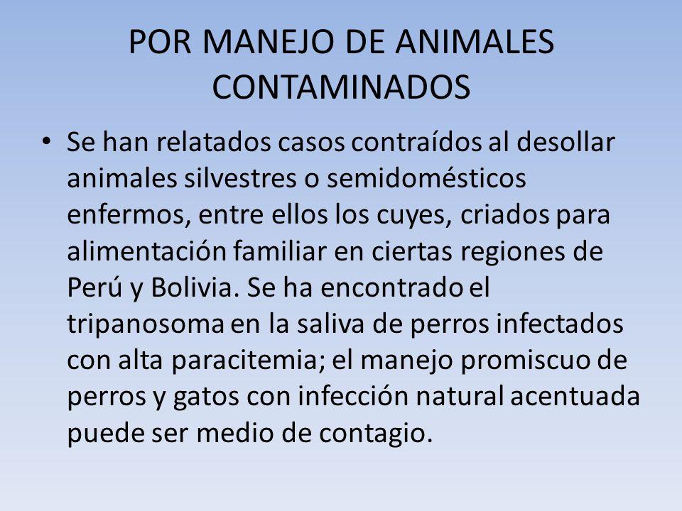 POR MANEJO DE ANIMALES CONTAMINADOS