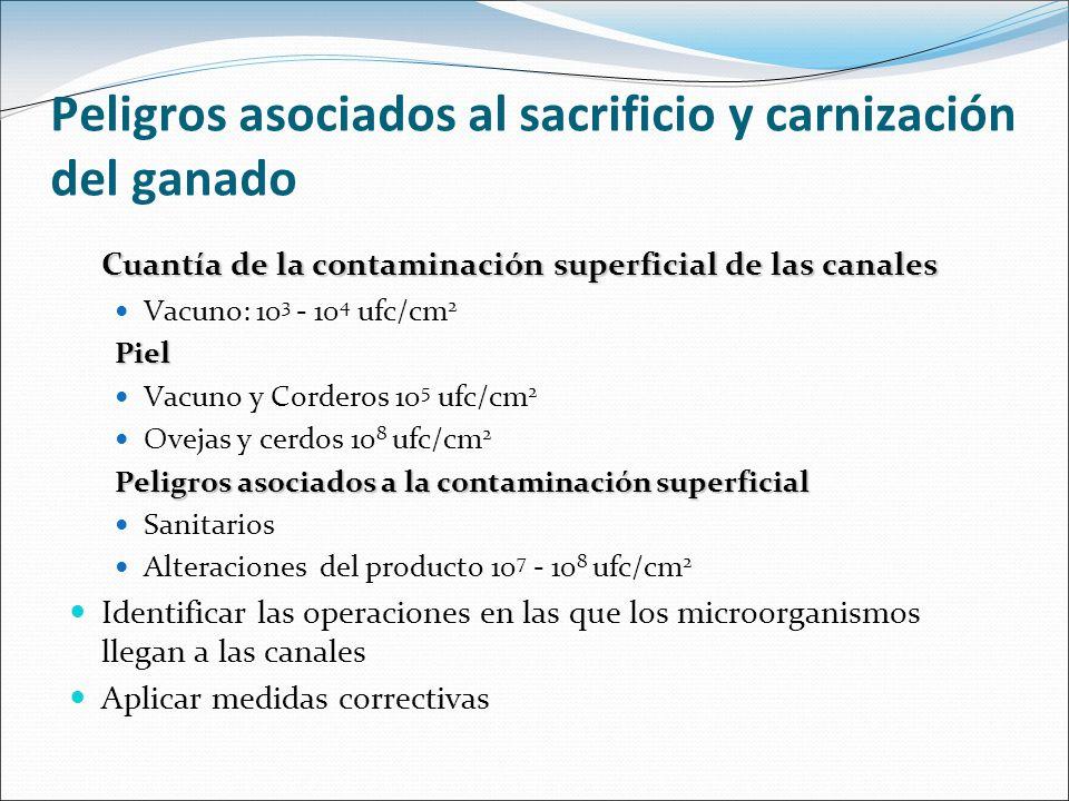 Peligros asociados al sacrificio y carnización del ganado