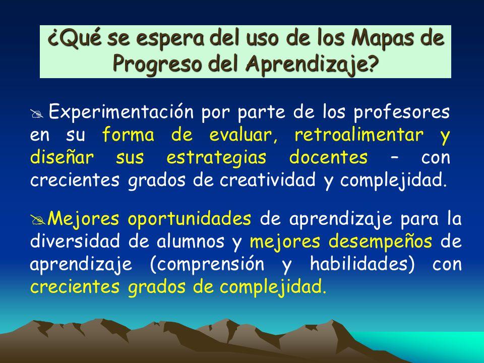 ¿Qué se espera del uso de los Mapas de Progreso del Aprendizaje