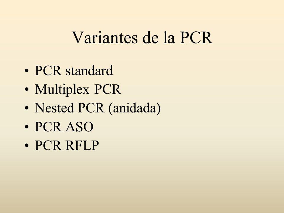 Variantes de la PCR PCR standard Multiplex PCR Nested PCR (anidada)