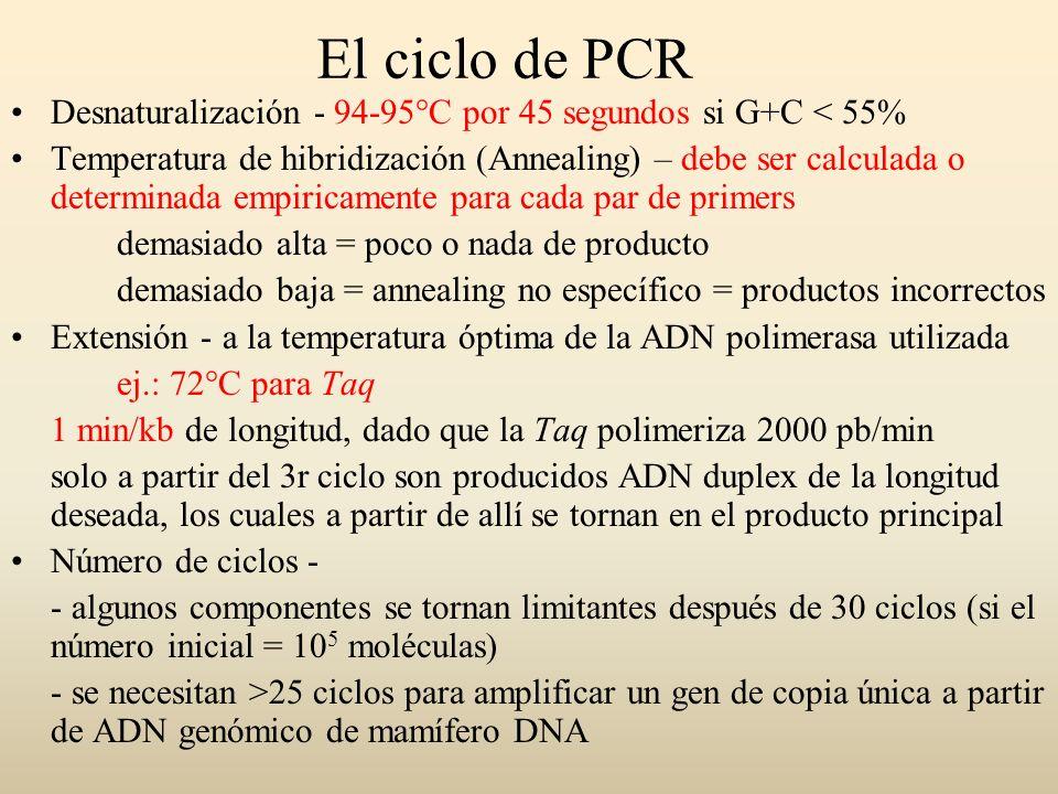 El ciclo de PCR Desnaturalización - 94-95°C por 45 segundos si G+C < 55%