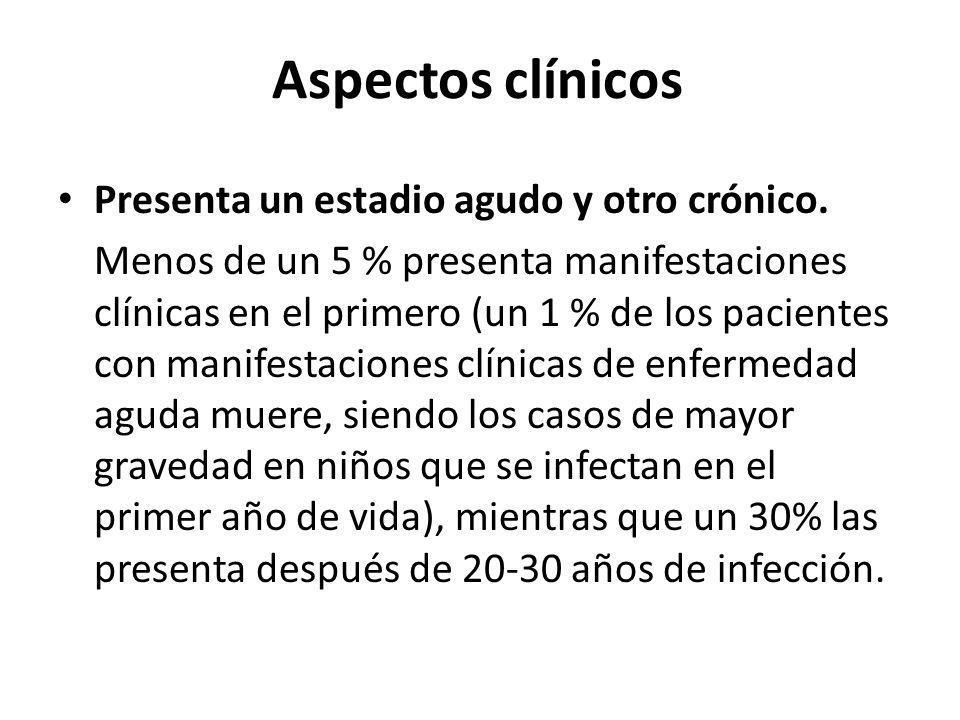 Aspectos clínicos Presenta un estadio agudo y otro crónico.