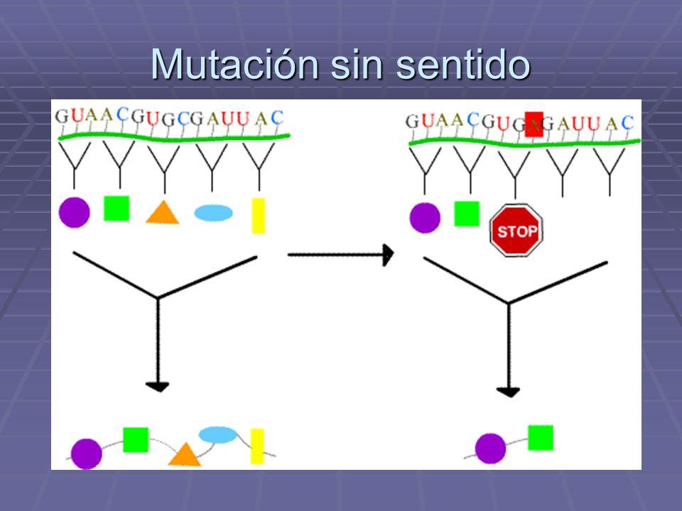 Mutación sin sentido
