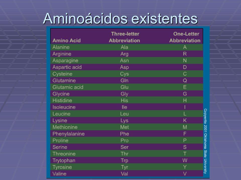 Aminoácidos existentes