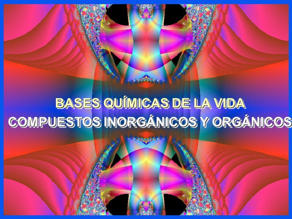 BASES QUÍMICAS DE LA VIDA COMPUESTOS INORGÁNICOS Y ORGÁNICOS