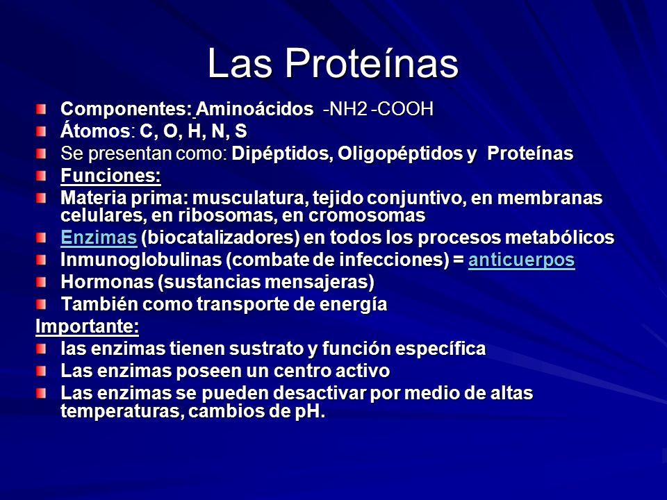 Las Proteínas Componentes: Aminoácidos -NH2 -COOH