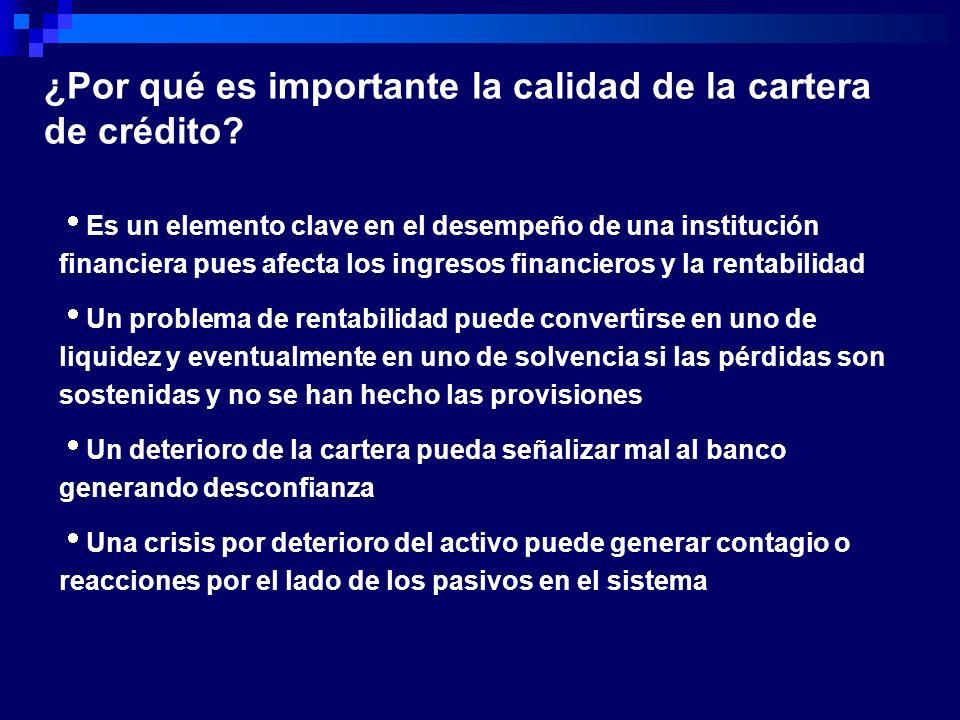 ¿Por qué es importante la calidad de la cartera de crédito