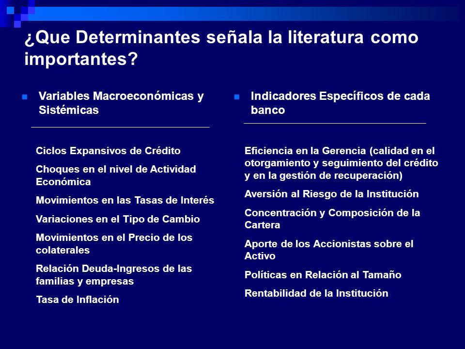 ¿Que Determinantes señala la literatura como importantes