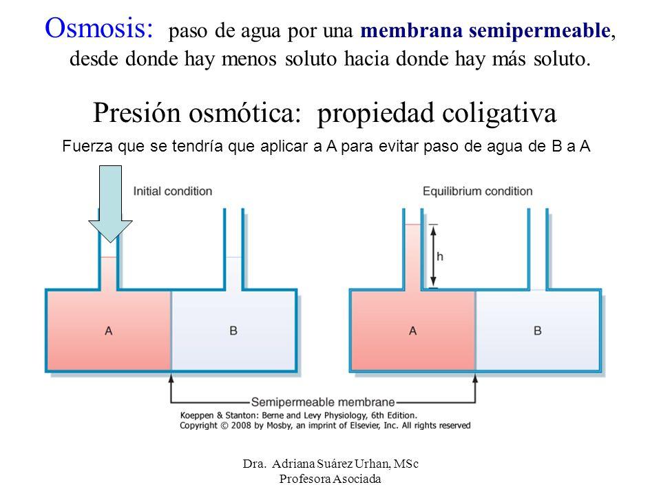 Presión osmótica: propiedad coligativa