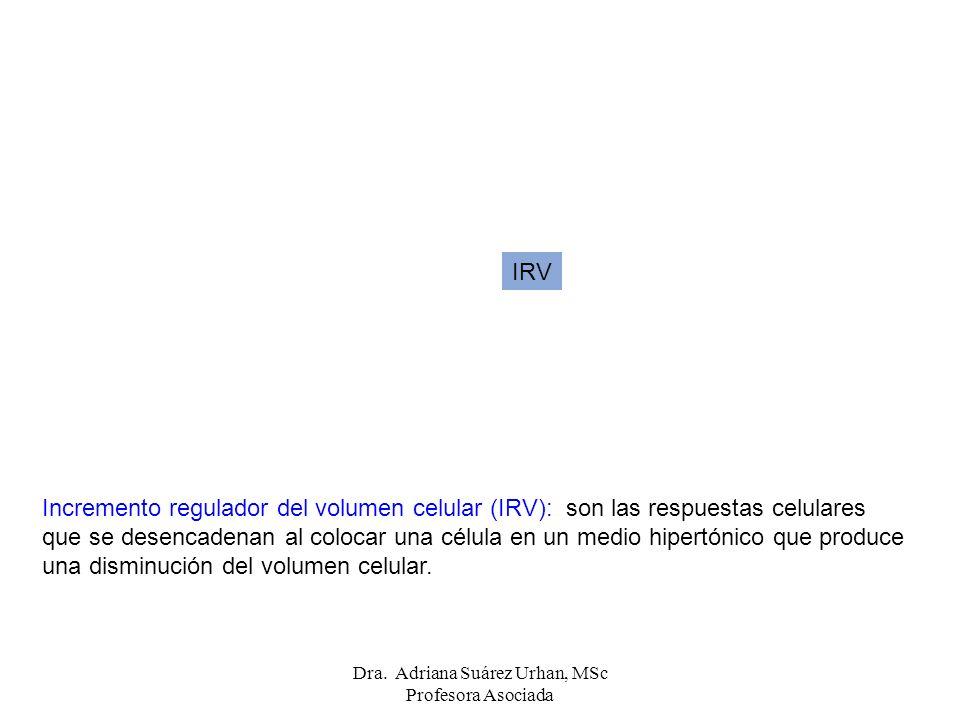 Dra. Adriana Suárez Urhan, MSc Profesora Asociada