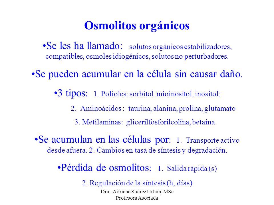 Osmolitos orgánicos Se les ha llamado: solutos orgánicos estabilizadores, compatibles, osmoles idiogénicos, solutos no perturbadores.