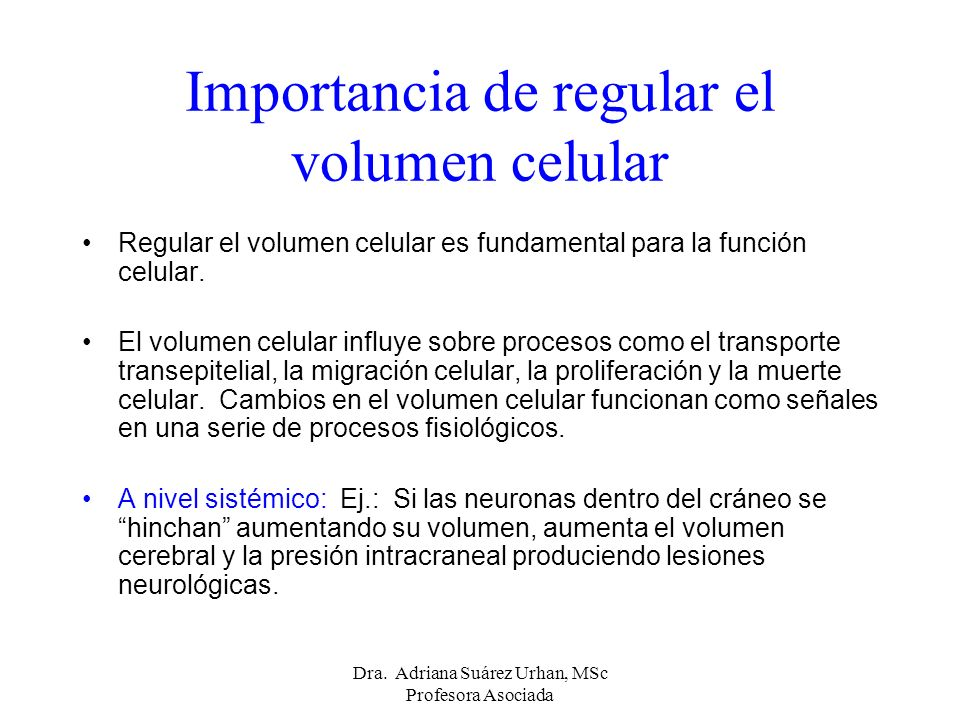 Importancia de regular el volumen celular