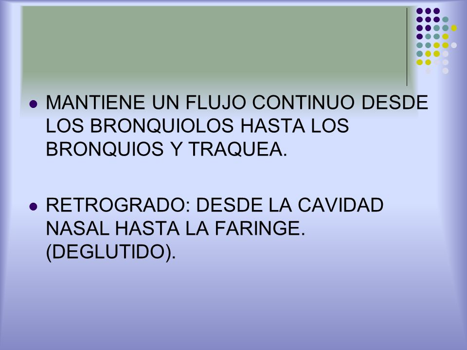 MANTIENE UN FLUJO CONTINUO DESDE LOS BRONQUIOLOS HASTA LOS BRONQUIOS Y TRAQUEA.