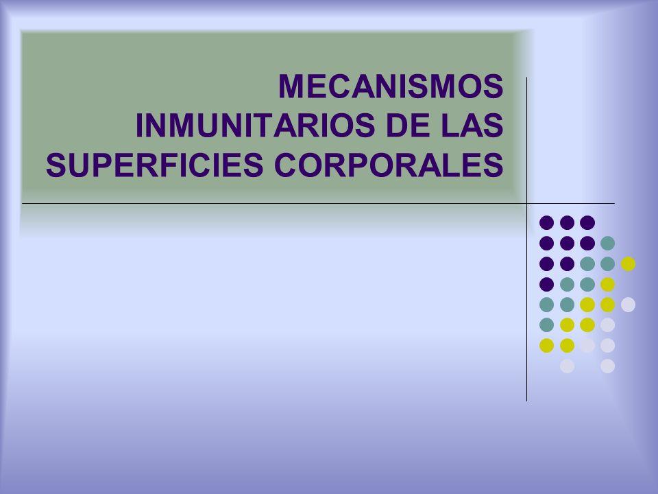 MECANISMOS INMUNITARIOS DE LAS SUPERFICIES CORPORALES