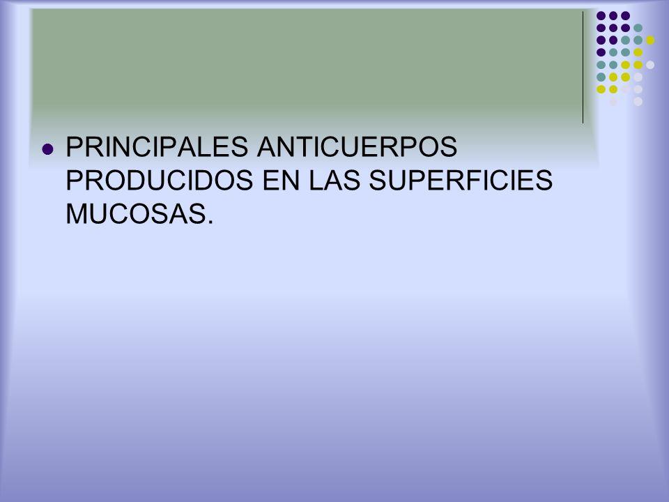 PRINCIPALES ANTICUERPOS PRODUCIDOS EN LAS SUPERFICIES MUCOSAS.
