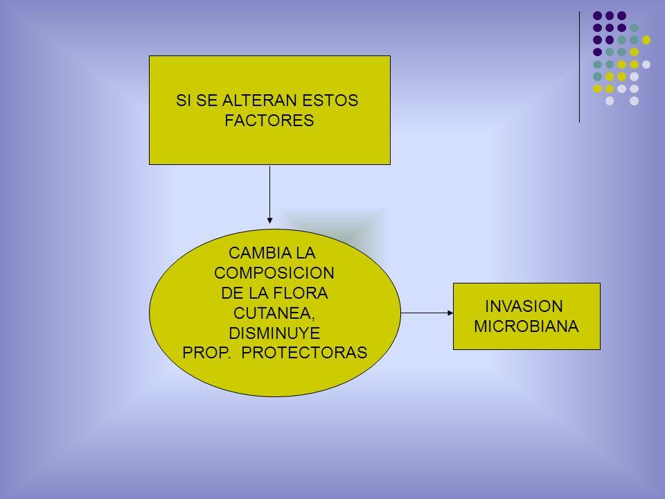 SI SE ALTERAN ESTOS FACTORES. CAMBIA LA. COMPOSICION. DE LA FLORA. CUTANEA, DISMINUYE. PROP. PROTECTORAS.