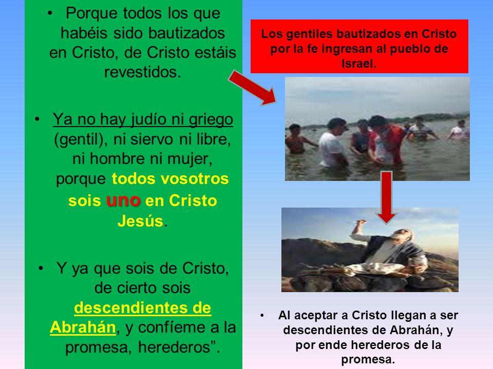 Porque todos los que habéis sido bautizados en Cristo, de Cristo estáis revestidos.
