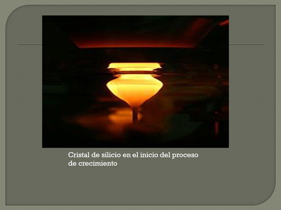 Cristal de silicio en el inicio del proceso de crecimiento