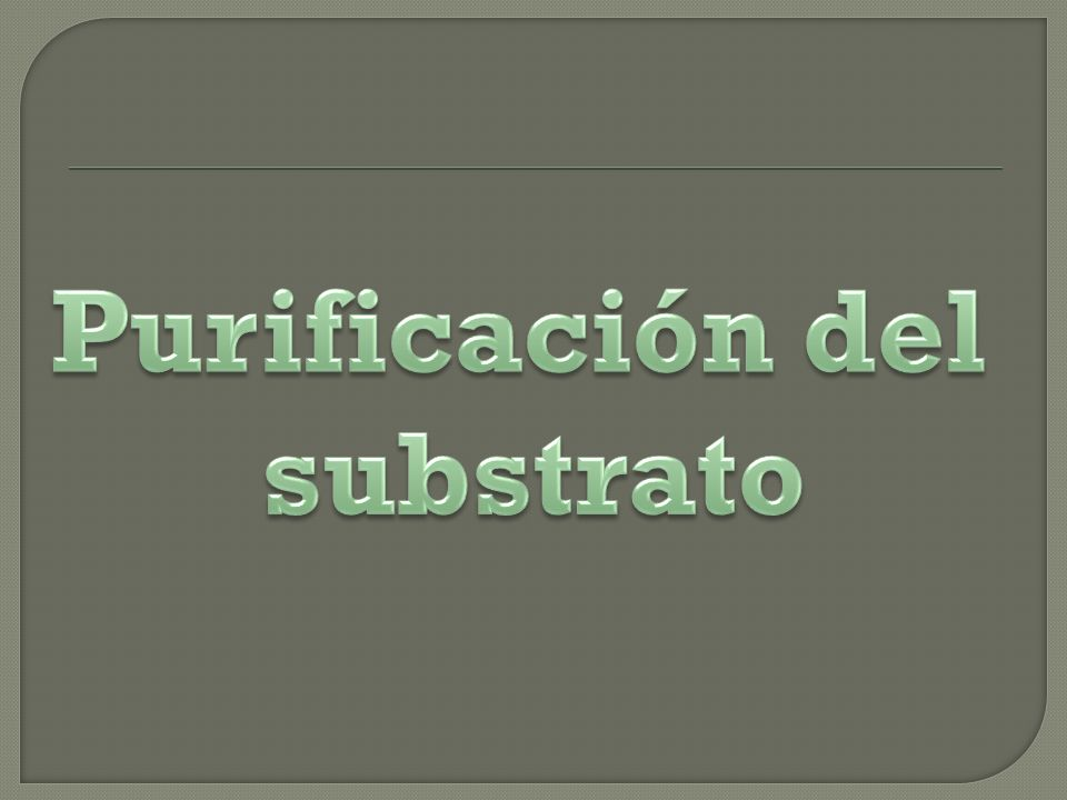 Purificación del substrato
