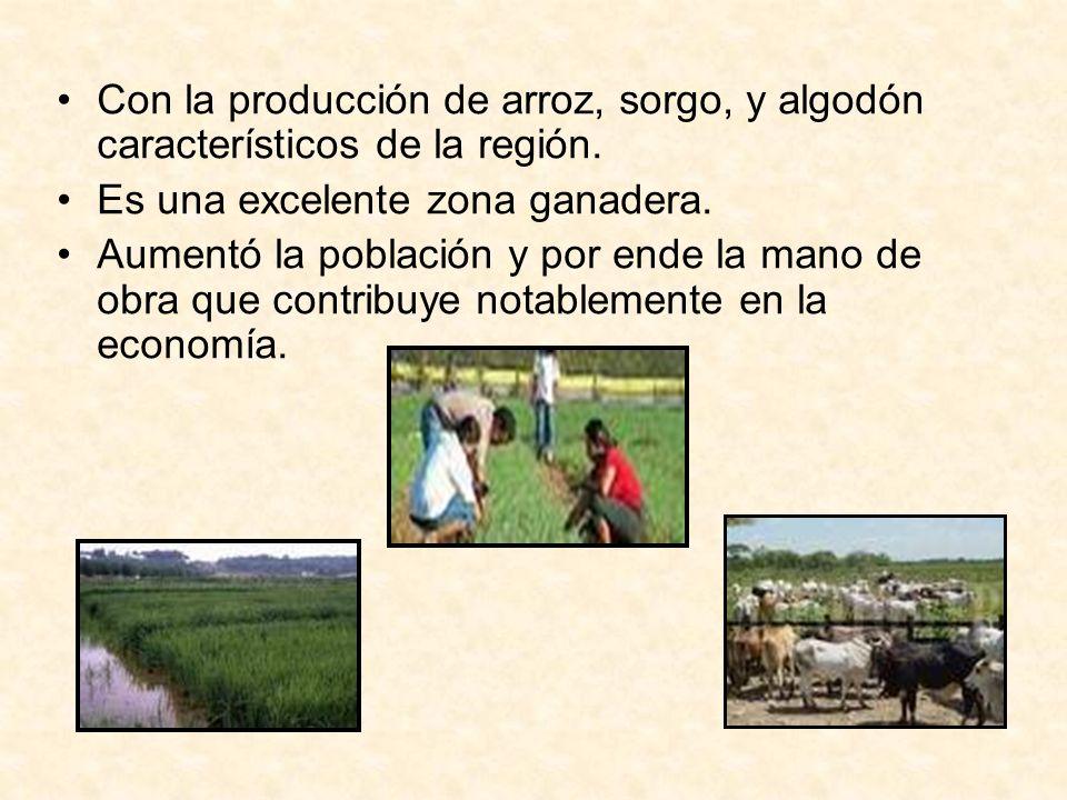 Con la producción de arroz, sorgo, y algodón característicos de la región.