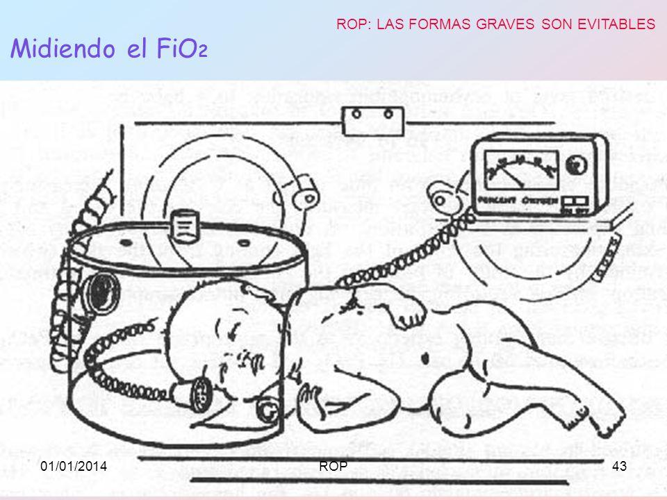 ROP: LAS FORMAS GRAVES SON EVITABLES
