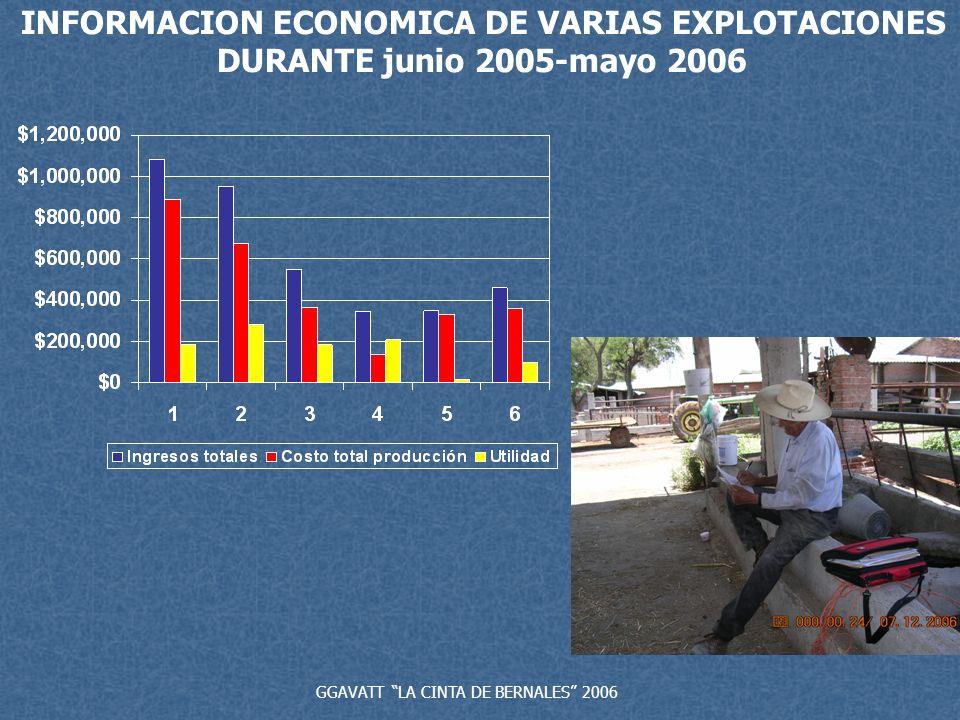 INFORMACION ECONOMICA DE VARIAS EXPLOTACIONES