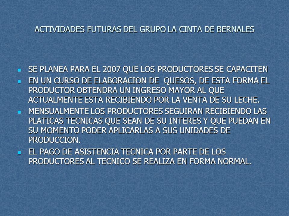 ACTIVIDADES FUTURAS DEL GRUPO LA CINTA DE BERNALES