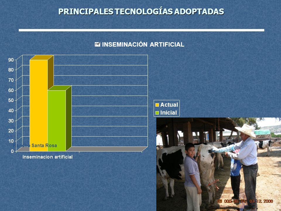 PRINCIPALES TECNOLOGÍAS ADOPTADAS