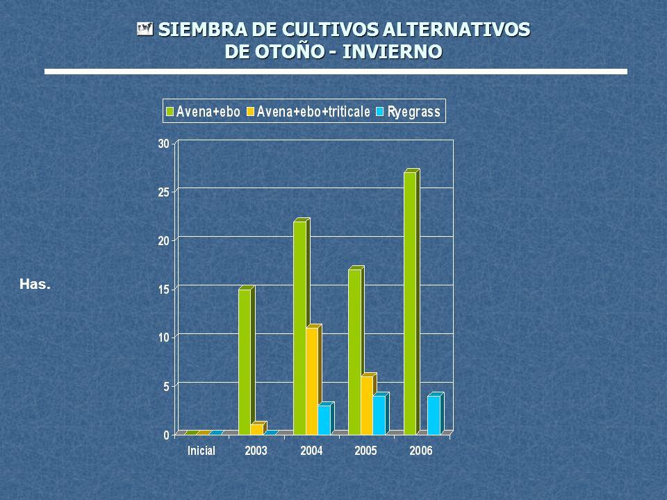 SIEMBRA DE CULTIVOS ALTERNATIVOS DE OTOÑO - INVIERNO