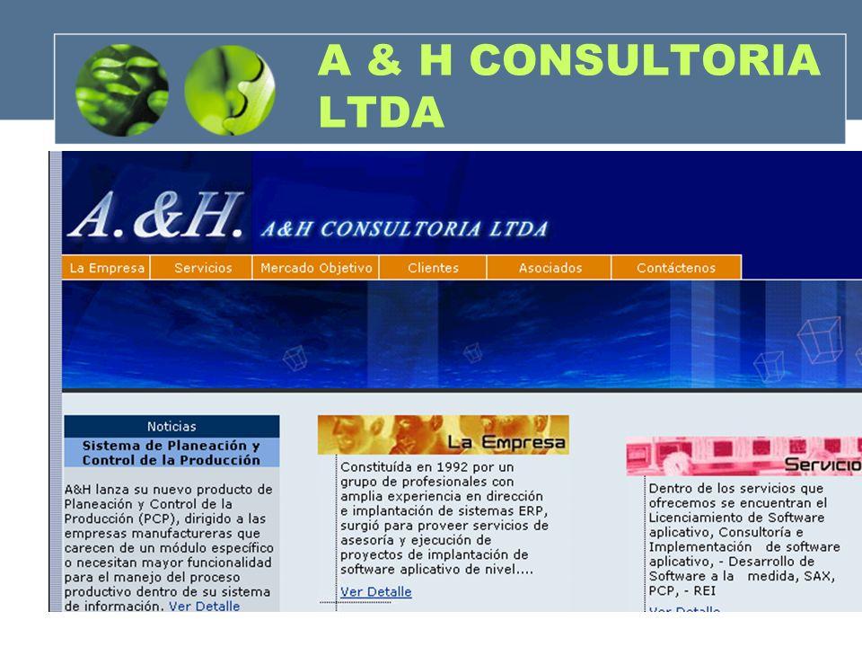 A & H CONSULTORIA LTDA