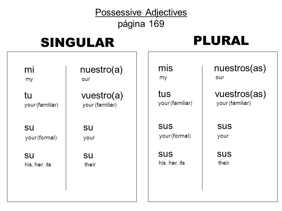 Possessive Adjectives página 169