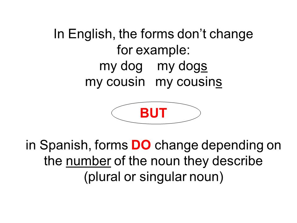 In English, the forms don't change for example: my dog my dogs my cousin my cousins BUT in Spanish, forms DO change depending on the number of the noun they describe (plural or singular noun)