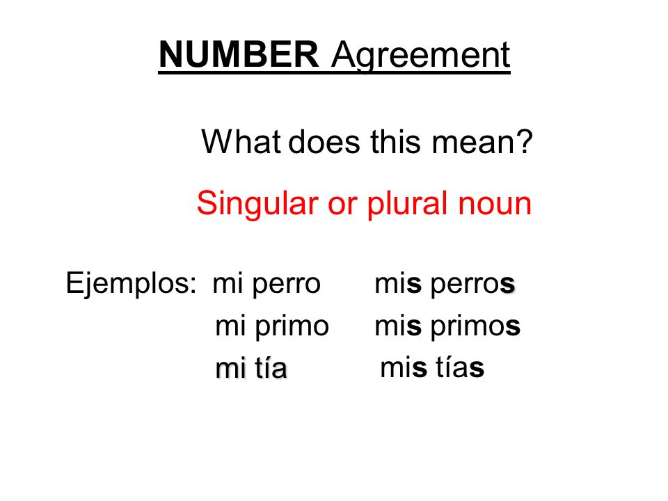 Singular or plural noun