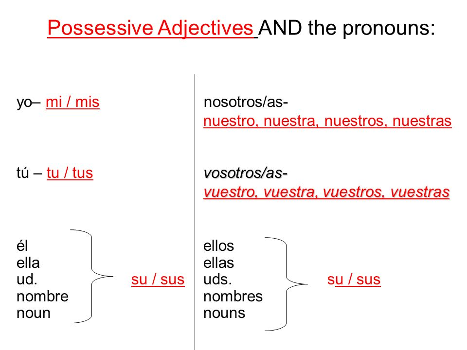 Possessive Adjectives AND the pronouns: