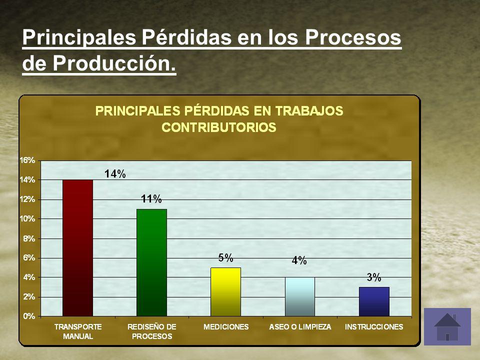 Principales Pérdidas en los Procesos de Producción.