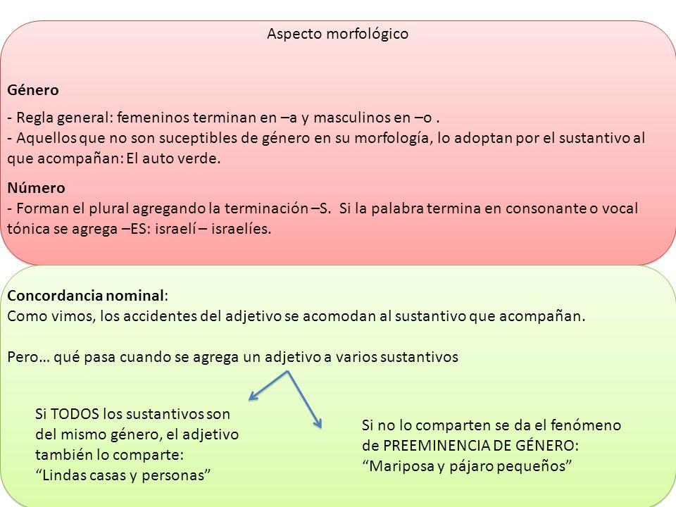 Aspecto morfológico Género. - Regla general: femeninos terminan en –a y masculinos en –o .