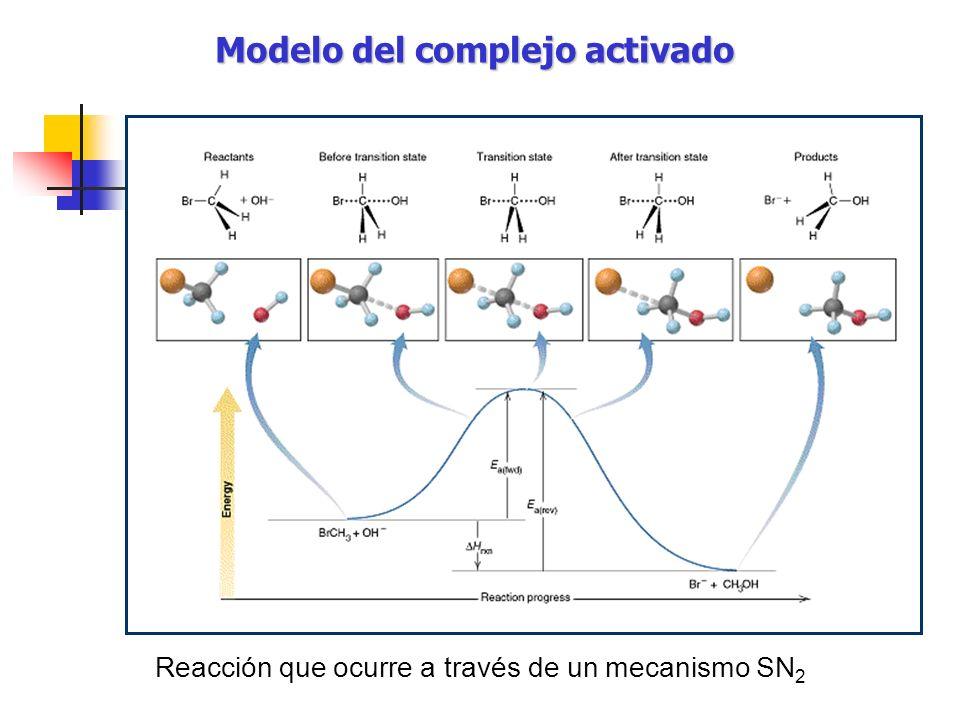 Modelo del complejo activado