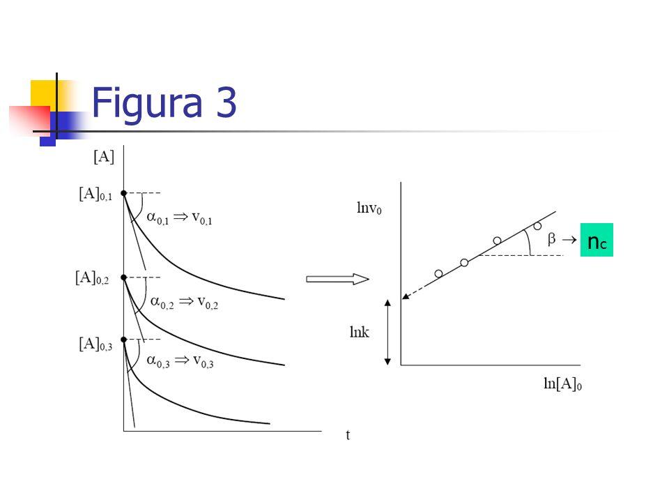 Figura 3 nc