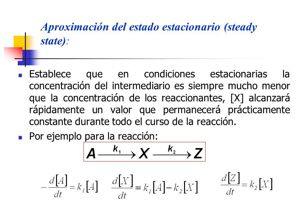 Aproximación del estado estacionario (steady state):