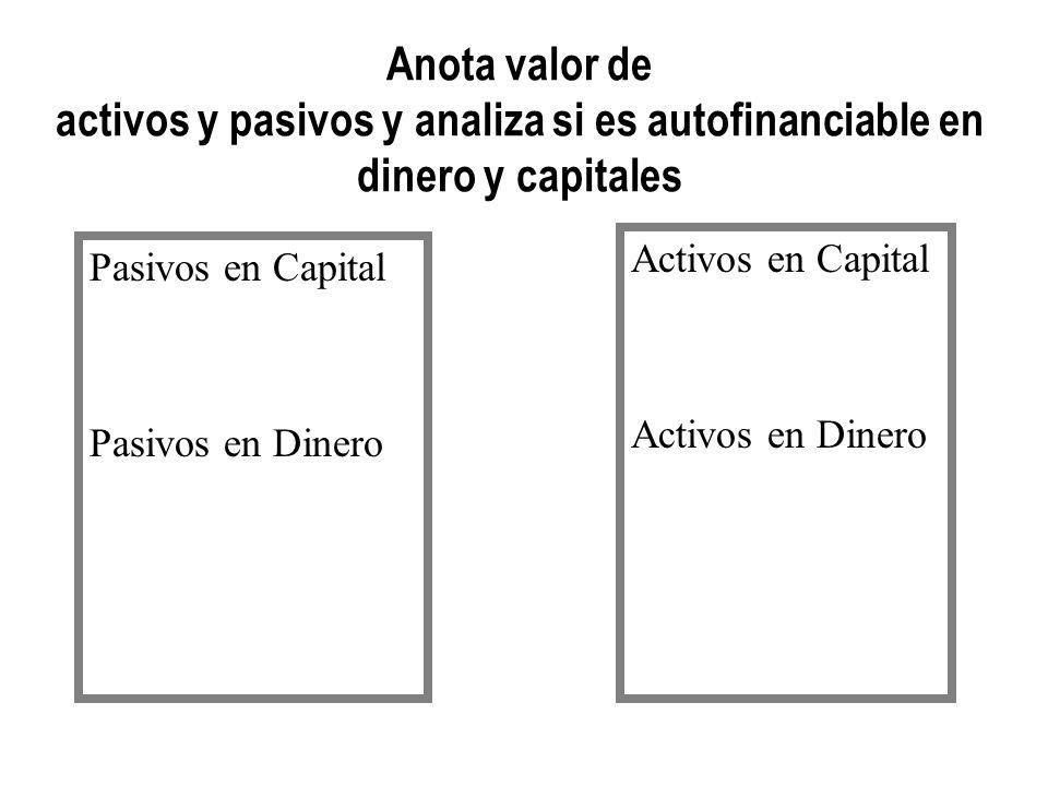 Anota valor de activos y pasivos y analiza si es autofinanciable en dinero y capitales