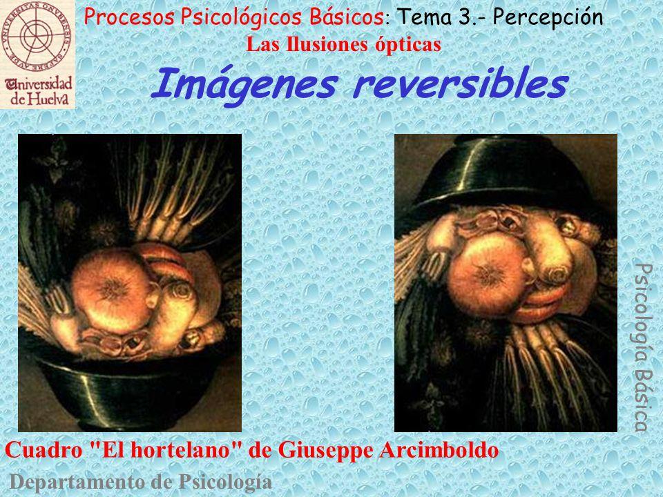 Imágenes reversibles Cuadro El hortelano de Giuseppe Arcimboldo