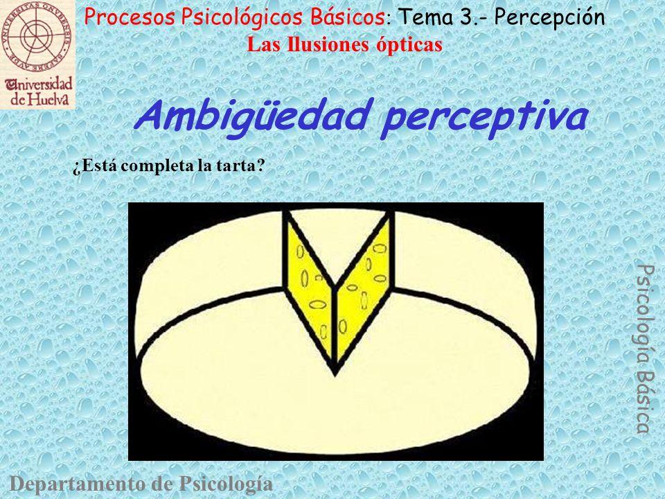 Ambigüedad perceptiva