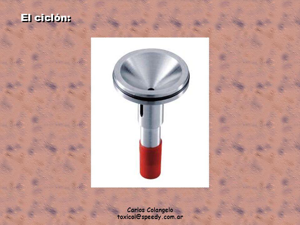 El ciclón: Carlos Colangelo toxicol@speedy.com.ar