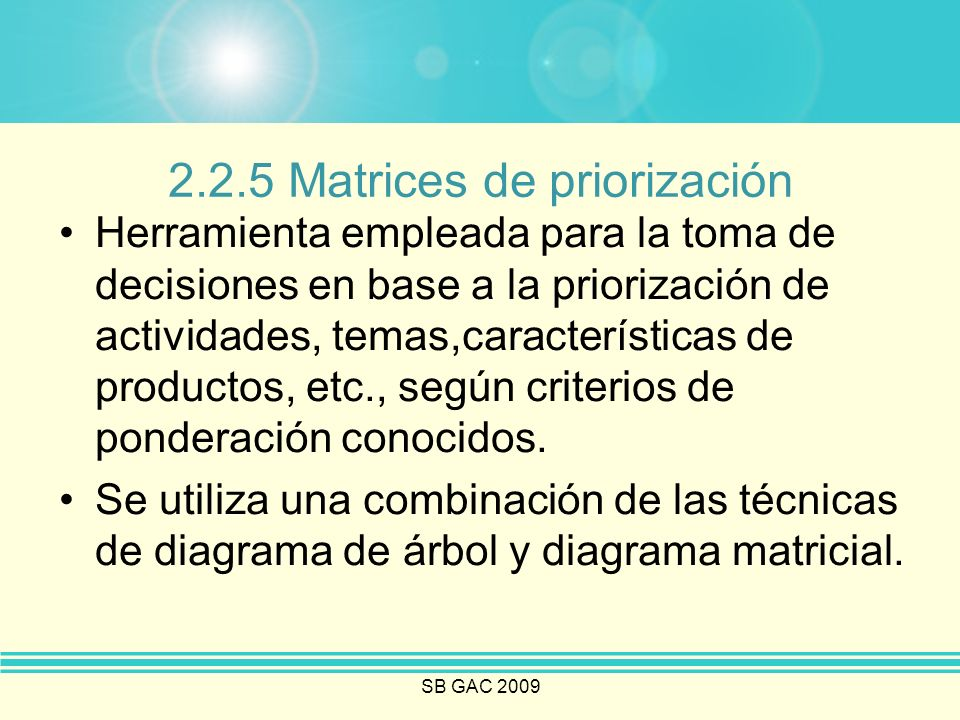 2.2.5 Matrices de priorización