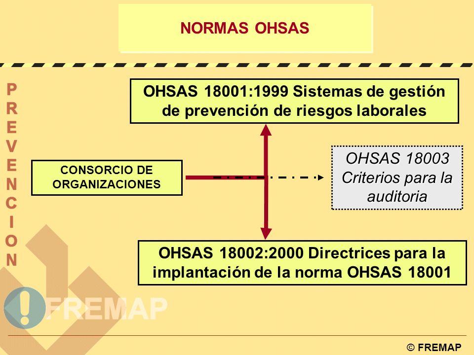 CONSORCIO DE ORGANIZACIONES
