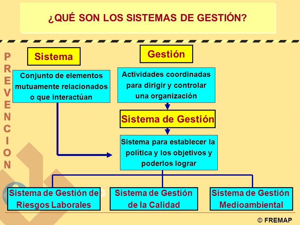 ¿QUÉ SON LOS SISTEMAS DE GESTIÓN