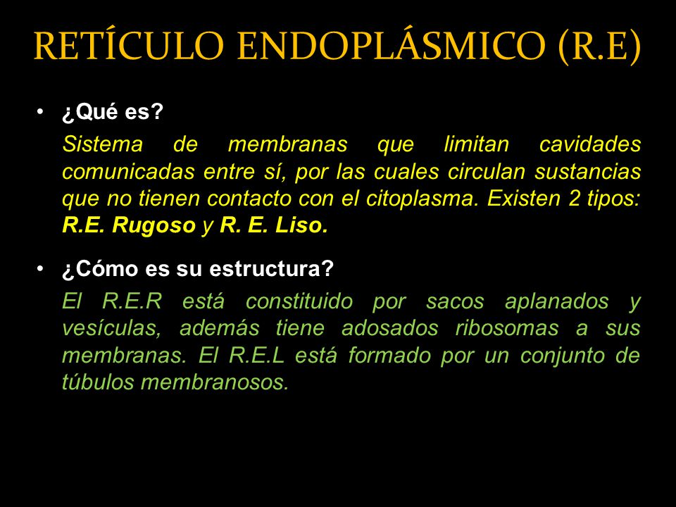 RETÍCULO ENDOPLÁSMICO (R.E)