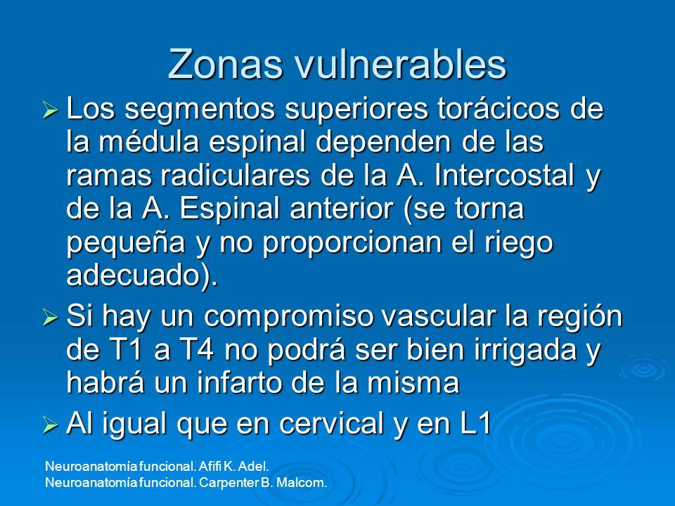 Zonas vulnerables